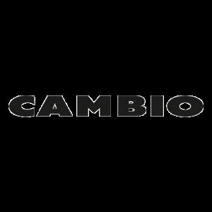 Logo-Cambio