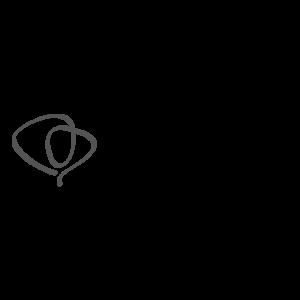 Logo-Toni